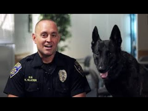 A Day in the Life of Galt PD K-9 Officer Slater & K-9 Copper