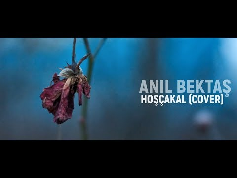 Anıl Bektaş - Hoşçakal (Cover)