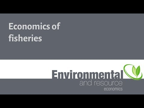 Economics Of Fisheries Lecture