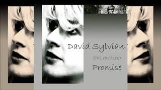 David Sylvian / Promise (the rarities) (Full Album)