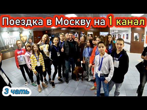Видео: Поездка в Москву на 1 канал. 3 часть. Программа видели видео. Питбуль Спайк.