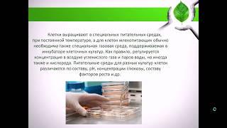 Технология культивирования клеток и тканей растений и животных