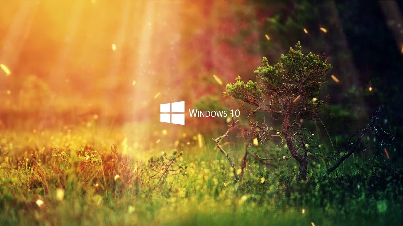 Live Wallpaper Windows 10 Nature Live Wallpaper 4k Youtube