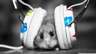 DJ Music Chal Hatt Bollywood Remix Full base