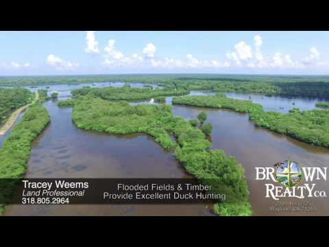 8500 Acre Share For Sale In Becks Bay Hunting Club, MS