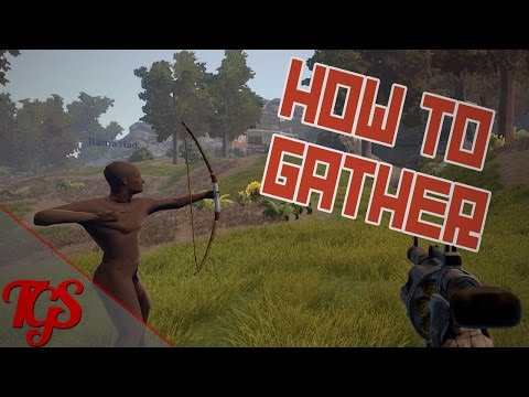 Rust Basics - How To Gather!