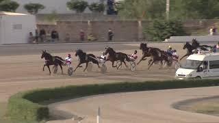 Vidéo de la course PMU PREMI CRITERIUM DELS 5 ANYS