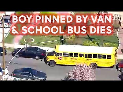 Boy, 7, dies after being pinned between school bus, van