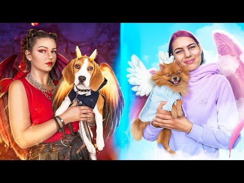 Good vs Bad Pet Owners