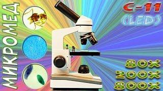 Микроскоп для школьника или студента - Микромед С-11(, 2016-12-23T07:50:41.000Z)