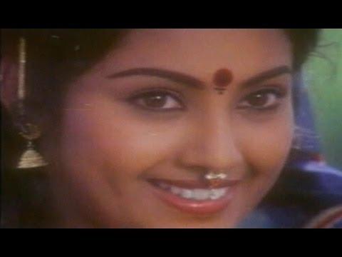 Moratodu Naa Mogudu Songs - Koyilala Naa - Meena - Rajasekhar