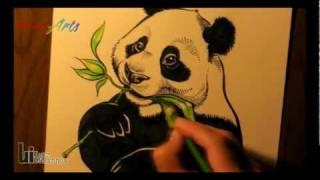 Giant Panda (Drawing with Pentel Brushes)