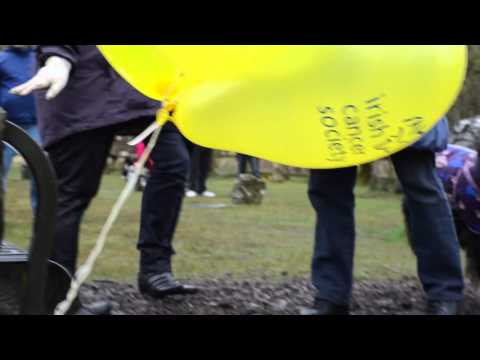 Daffodil Day, Irish Cancer Society Charity Walk 2013