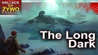 Poszukiwanie rozbitków - The long dark - Na żywo