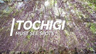 Exploring Tochigi Perfecture