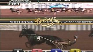 Spider Blue Chip - 2013 Breeders Crown Final - Three-Year-Old Colt Trot