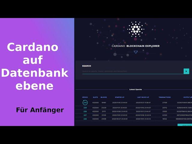 Cardano auf Datenbankebene (Blockchain Explorer,  Transaktionen, Slots, Epochen)