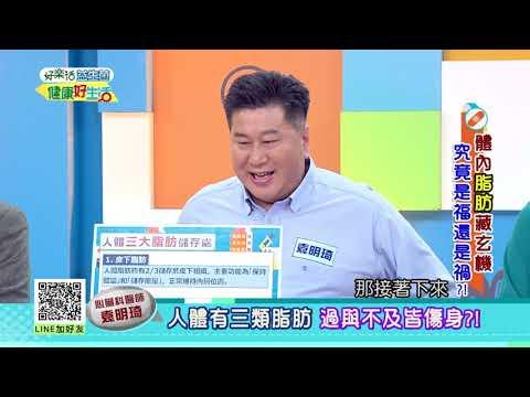 20190416 健康好生活 體內脂肪藏玄機 究竟是福還是禍?!