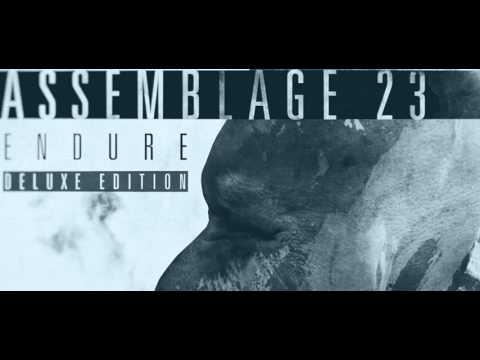 Assemblage 23 - Salt the earth