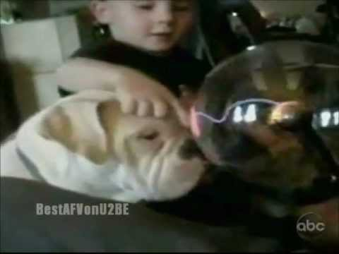 ☺ America's Funniest Home Videos Part 122 | OrangeCabinet