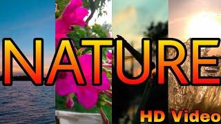 Nature Scenery | Part 2 | Full Hd | Beautiful Nature Scenery Video