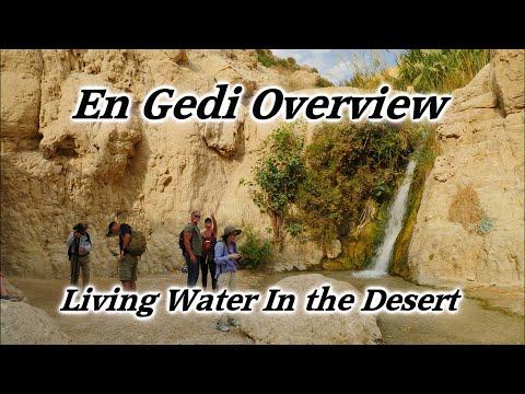 En Gedi, Israel, Living Water In The Desert, David's Hideout, Masada, Dead Sea, Oasis, Jer. 2:13