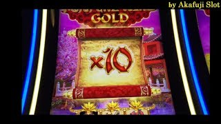 ALL BIG WIN★Fortune King Gold, Timber Wolf, Amazing Money Machine, Pechanga Casino, Akafujislot