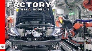 2019 Tesla Model 3 Factory