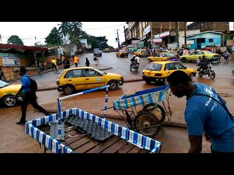 CRADAT Université de Yaoundé 1 Ngoa Ekele Cameroon