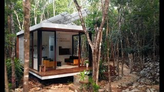 Live Tiny In The Mexican Jungle