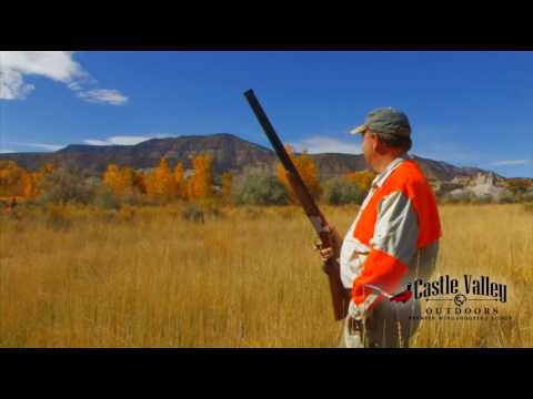Pheasant Hunting in Castle Valley Outdoors. The premier wingshooting lodge