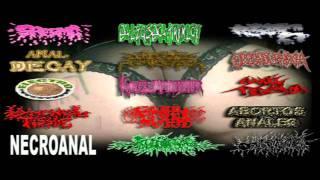 Necroanal-Coito El Muerto