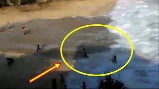 Download Video Wisatawan Panik, Ombak Menggulung Laut Kidul di Pantai Ngedan Yogyakarta MP3 3GP MP4