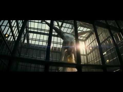 Trailer do filme A Brigada do Diabo