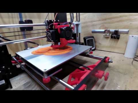 10 HOUR TIMELAPSE ANET A8 PRINTING HAIRY LION (ANET A8)