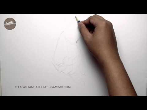 Latih Gambar Tangan (Telapak Tangan) 002