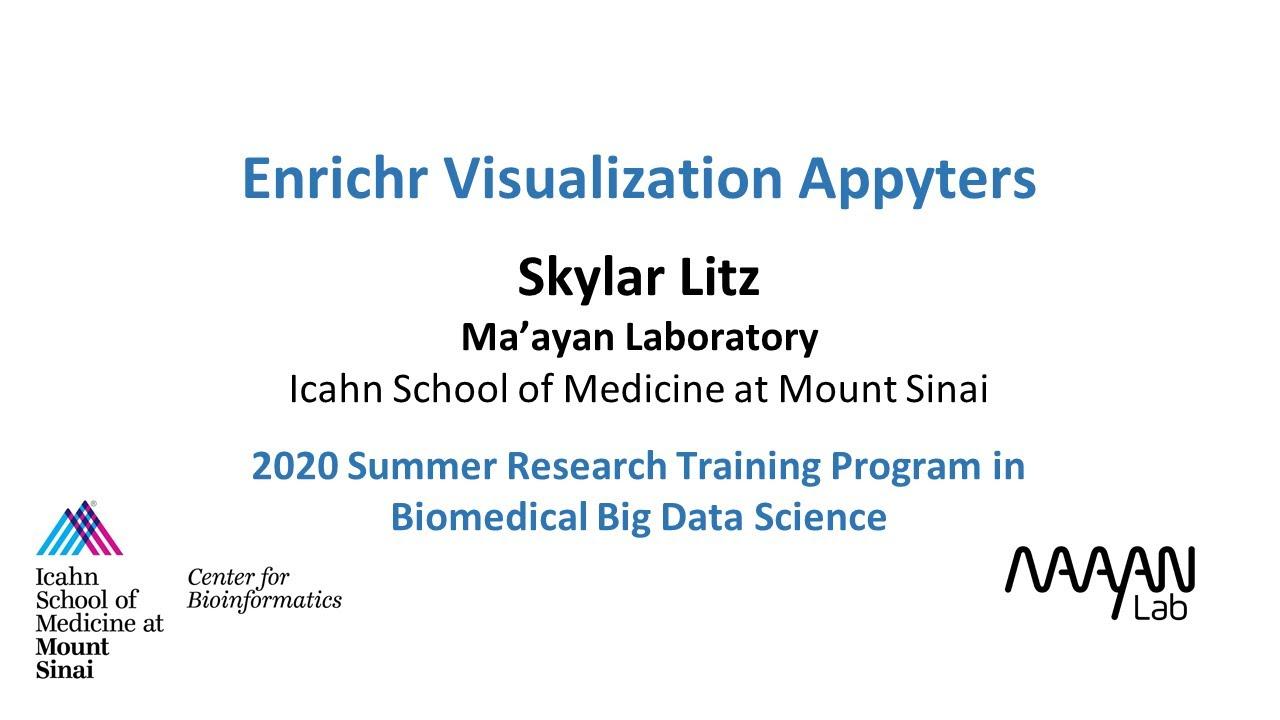 Enrichr Visualization Appyters