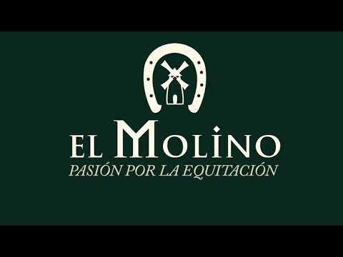 El Molino - Gran Semana Anglo-árabe Sevilla 2021