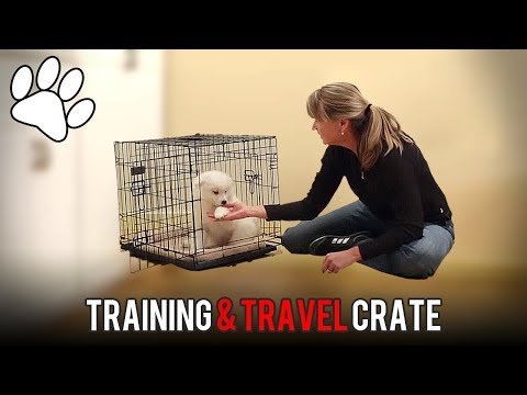 Lucky Dog™ Dog Training and Travel Crate - Assembly and Crate Training Tips