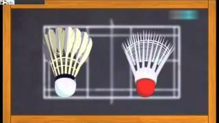 Badminton Nedir? Nasıl Oynanır? Animasyonlu Anlatım )