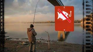 РЫБАЛКА В ЗАПРЕТ на реке Кудьма РЫБЫ НЕТ зато