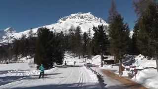 Cross country skiing Engadin St. Moritz - Silvaplana