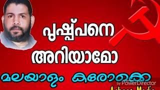 PUSHPANE ARIYAMO| Malayalam Karaoke With Lyrics|പുഷ്പനെ അറിയാമോ