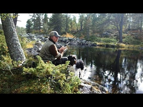 Solo Bushcraft Vacation in Sweden. Fishing, wood spirit and beautiful nature.