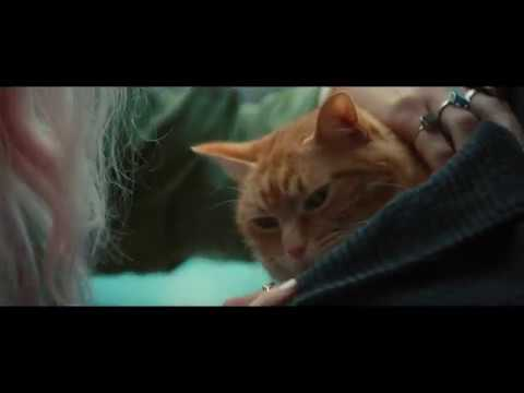 A Street Cat Named Bob - Stairwell Clip - At Cinemas November 4