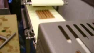 Линия Vemag для производства чевапчичи