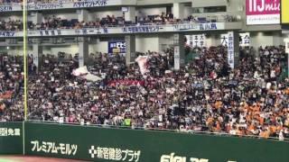 2017.6.3 会場 東京ドーム 対読売ジャイアンツ 歌詞 君の声よ遥か届け ...