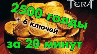 TERA online (RU) - 2500 голды за 20 минут