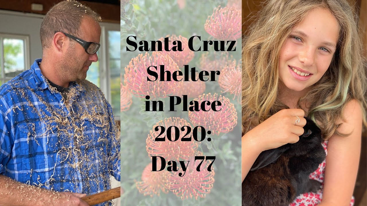 Santa Cruz Shelter in Place 2020: Day 77