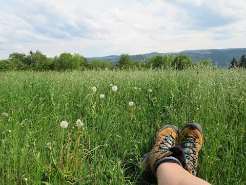 Wanderung Porrentruy nach St. Ursanne (Etappe 1/Trans Swiss Trail)